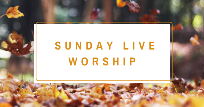 Live Sunday Worship Services image