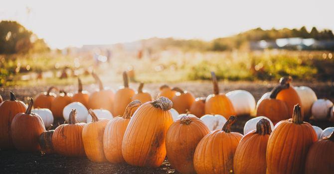 Thanksgiving Sunday image
