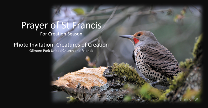 Creatures of Creation: Photography image