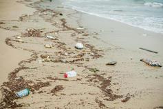 Beach pollution plastic bottles other trash sea beach rain 82604267