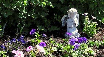 Remembering Garden