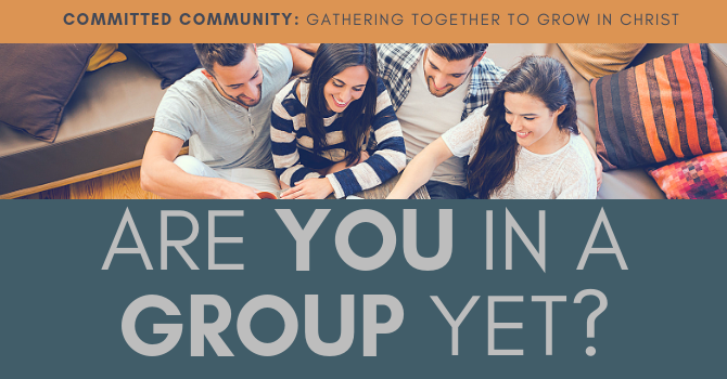 GROUPS RE-LAUNCH 2019