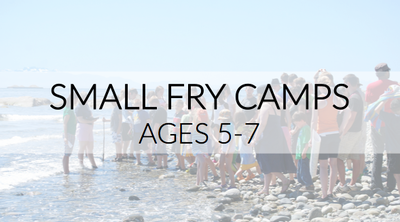 Small Fry Camps Ministry