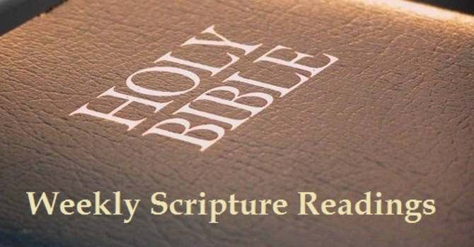Scripture Readings - for January 13th 2019 image
