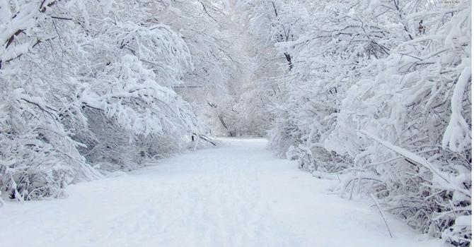 Snow Day!  Sunday, December 31 Worship Service Cancelled image