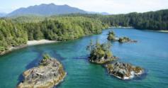 Haida%20gwaii%20coast