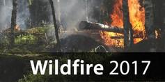 Wildfire%202017
