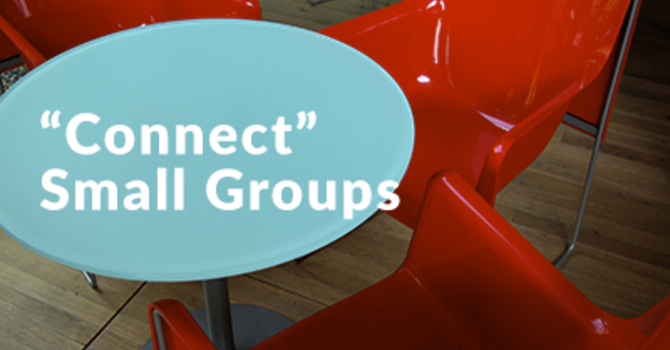 Connect / Small Groups