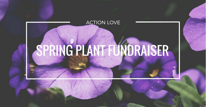 Spring Plant Fundraiser image