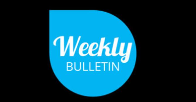 Weekly Bulletin - October 13 2019 image
