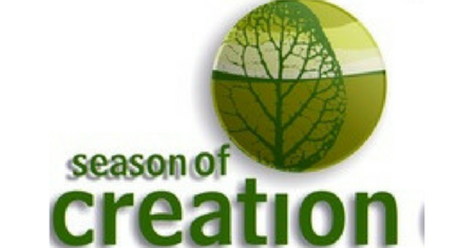 Season of Creation. A Guide to this week's Daily Practice. image