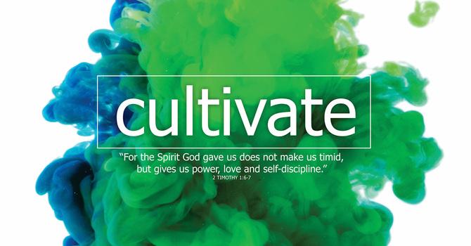 Cultivate Series