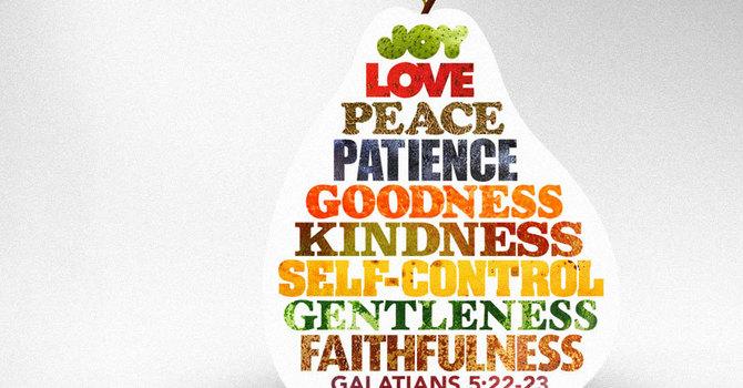 John 14:25-27;  John 16:12-15; Corinthians 12: 1-11;   Galatians 5:22-23  image
