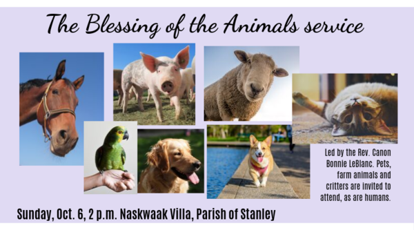 The blessing of the animals service