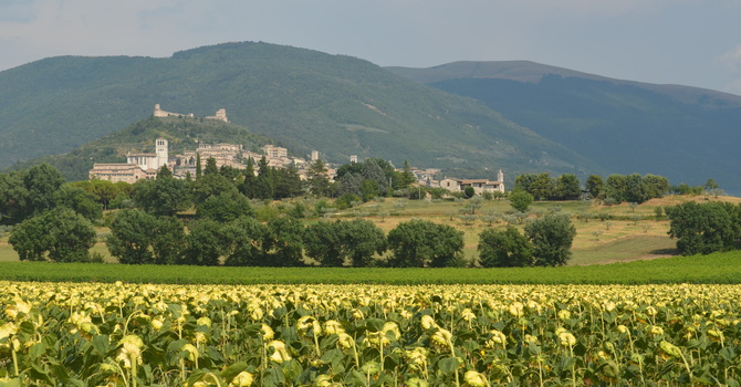 PILGRIMAGE TO ASSISI: On The Road with Francis of Assisi