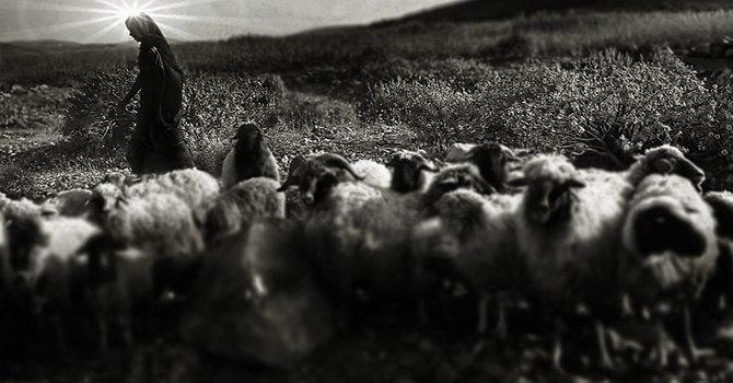 Why shepherds at Bethlehem?