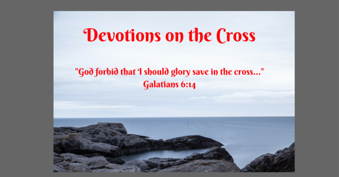 Blood & Water While on the Cross