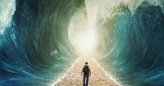 Why You Need a Saviour?  image