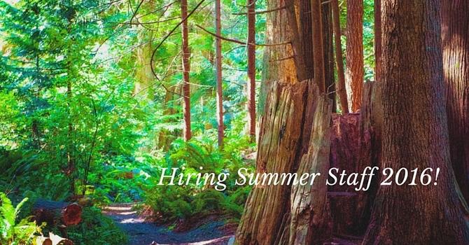 Hiring Summer Staff 2016 image