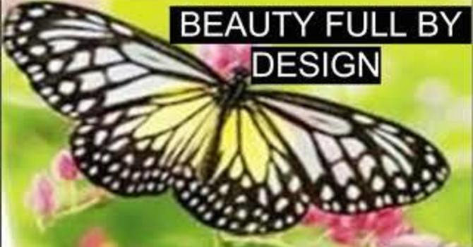 Beauty Full by Design