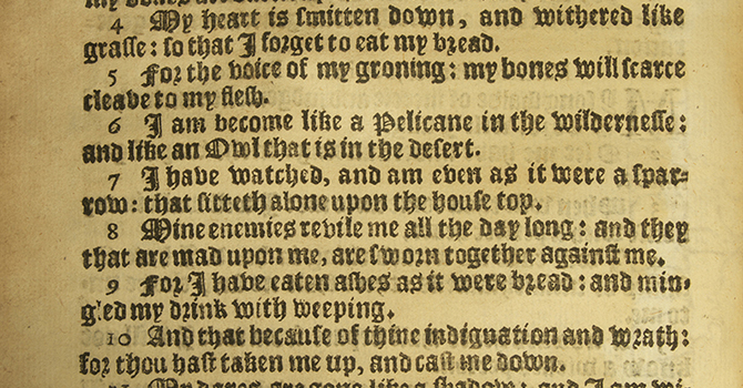 Reflection on Psalm 102: 1-11  - Part 1