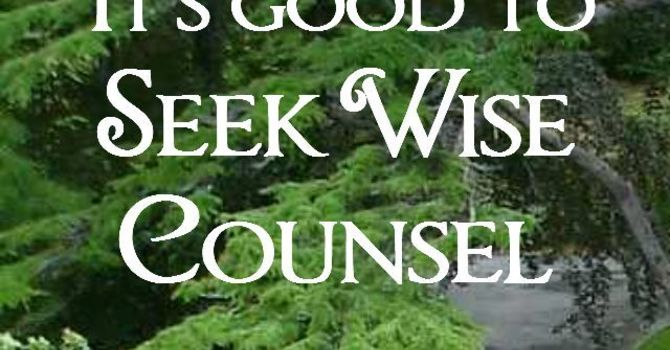 5 qualities of a wise counselor  image