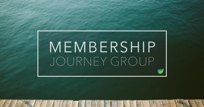Membership Journey Group