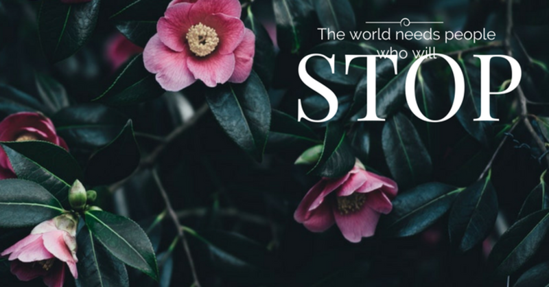 The World Needs People Who Will STOP