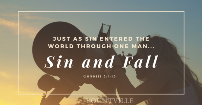 Sin and Fall