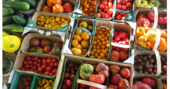 To Feed the World, Let's Cut Food Waste  image