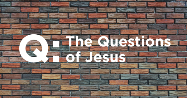 Q: The Questions of Jesus