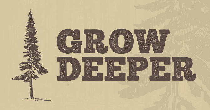 Grow in a Community Group