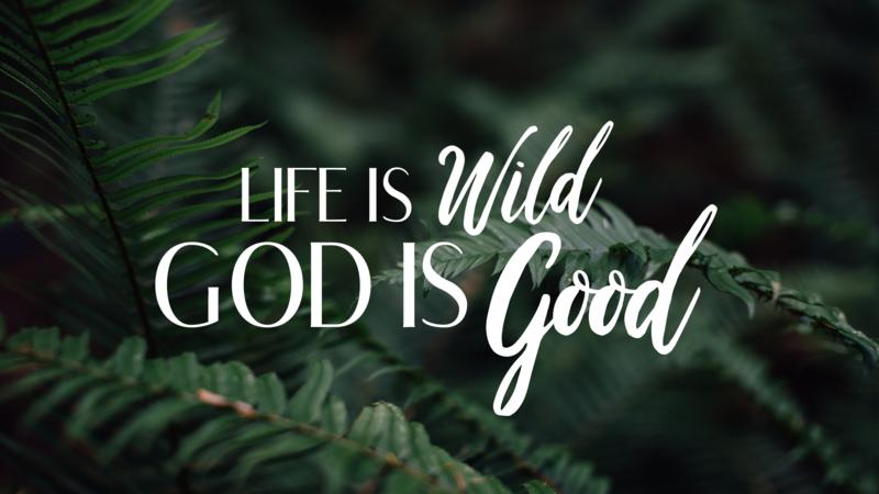 Life is Wild- God is Good