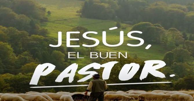 Jesus El Buen Pastor   Octubre 11, 2020