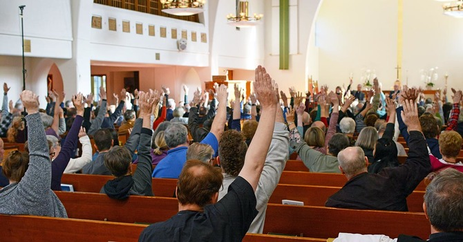 Canon 2 and 3 Revisions - Motion Carried at Special Synod