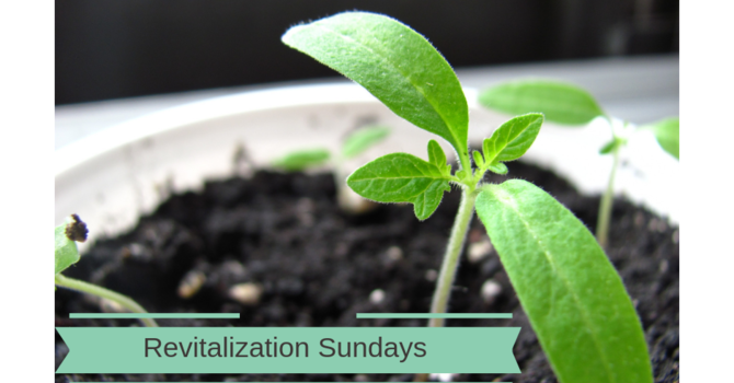 First Revitalization Sunday image