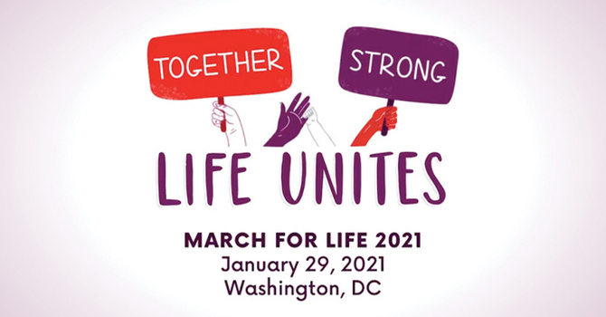 March For Life Trip image