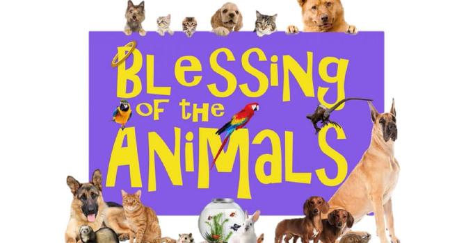 Evening Prayer Pet Blessings