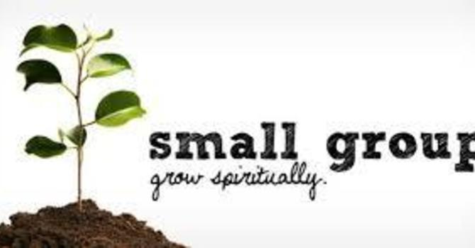 Small Faith Groups - Weekly Participant Material Here image