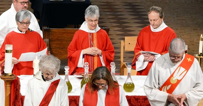 Renewal of Vows - Chrism Mass
