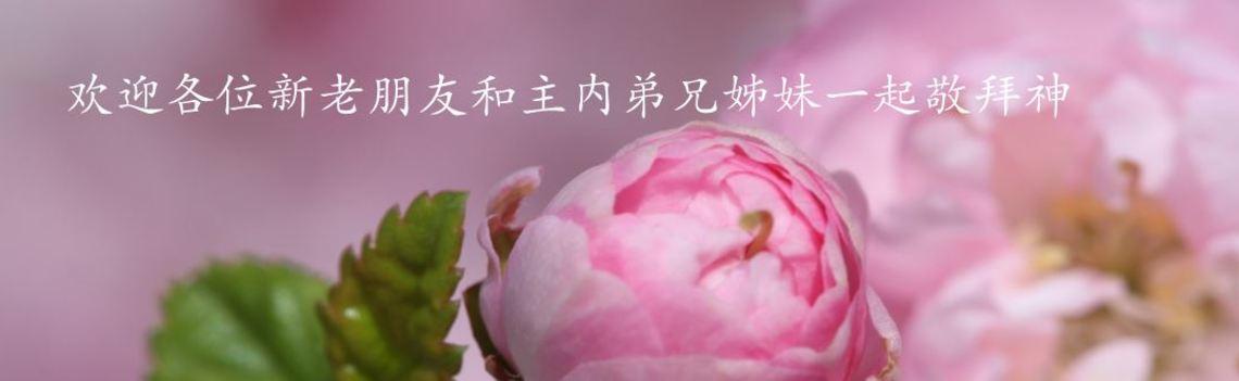 South Gate Alliance Church   Mandarin (國語)