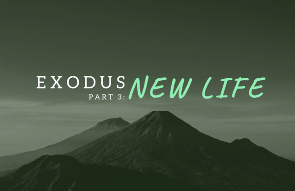 Exodus: Part Three - New Life