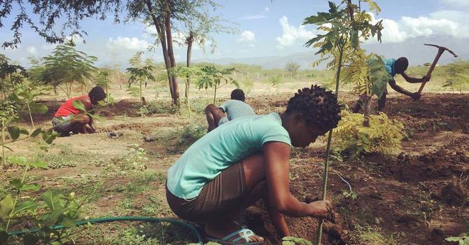 Eden Reforestation Projects
