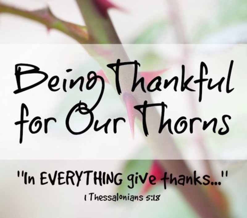 Being Thankful for our thorns