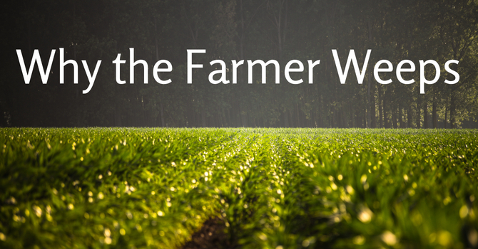 Why The Farmer Weeps