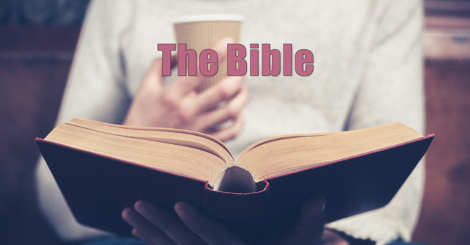 The Bible - Getting Into It!