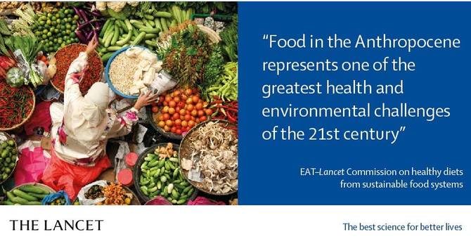 What diets are 'sustainable'?  Here's the best report yet image