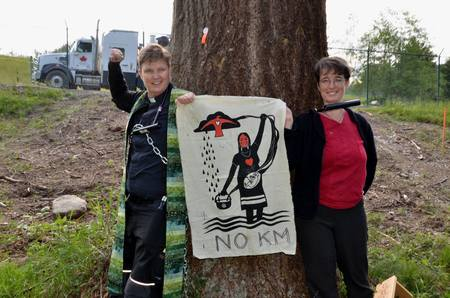 Salal and Cedar Members Lock Down a Tree