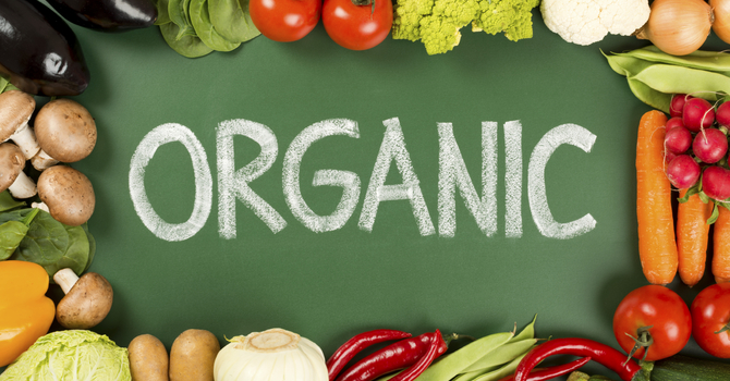 Yes, Organic Food is Worth the Price image