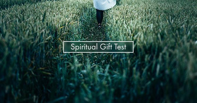 Spiritual Gifts Test image